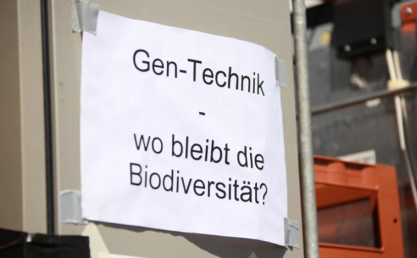 NEU Website SchReckenholz.ch Updates